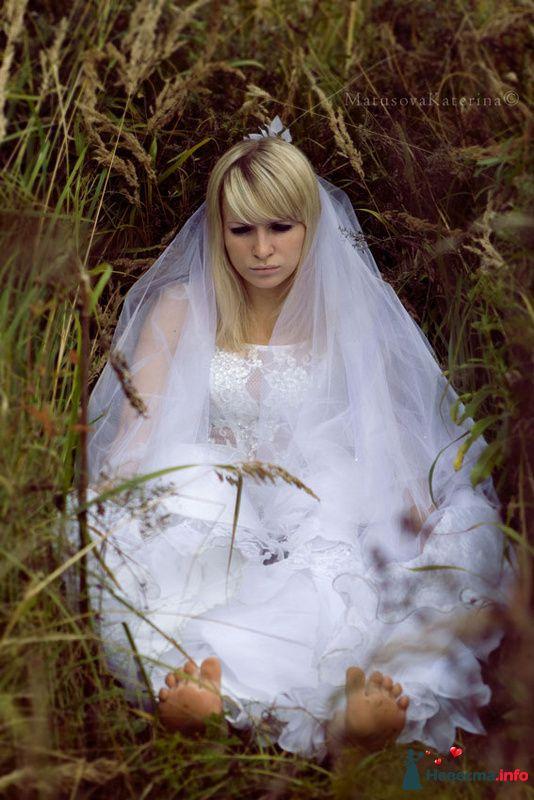 Фото 97447 в коллекции Свадьба - Olysha