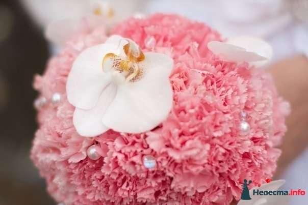 Букет невесты из розовых гвоздик и белой орхидеи  - фото 112764 Невеста01