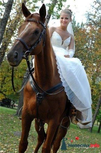 Две невесты - фото 99403 S46