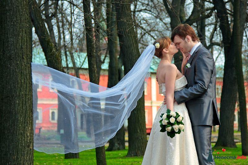 Фото 100049 в коллекции Фотограф Вячеслав Стукало - Свадебная фотография - Невеста01