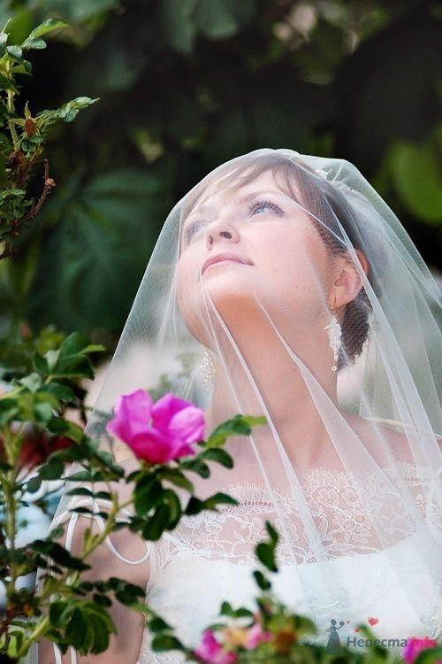 Фото 30764 в коллекции Свадебные - Фотограф Наталья Черкасова