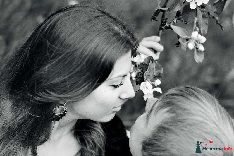 Фото 102443 в коллекции Инара (Inessa18) и Алексей в яблоневом саду - Фотограф Наталья Черкасова