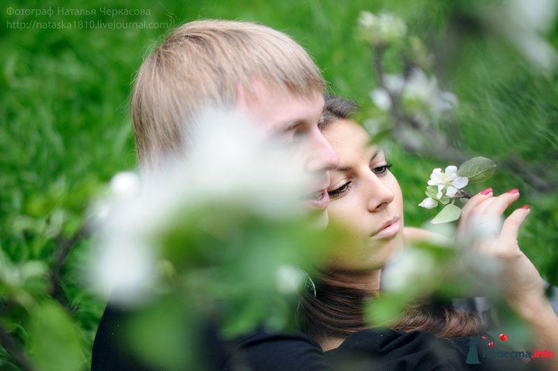 Фото 97298 в коллекции Свадебные - Фотограф Наталья Черкасова