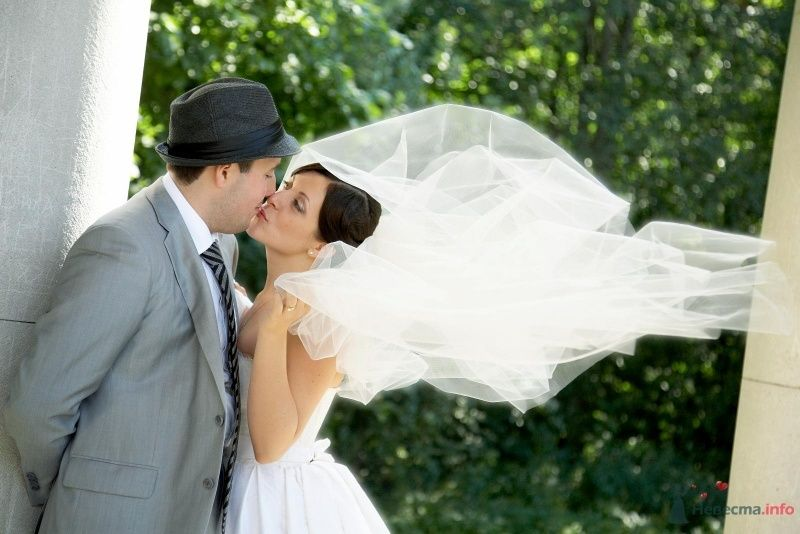 Жених и невеста целуются на фоне зелени