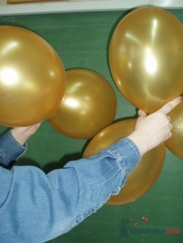 Фото 11475 в коллекции Как  украсить зал шариками самостоятельно - Невеста01