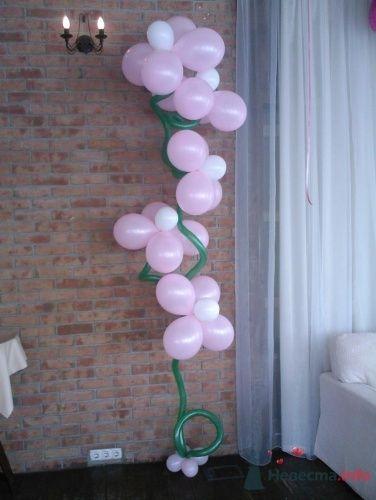 Фото 11502 в коллекции Как  украсить зал шариками самостоятельно - Невеста01