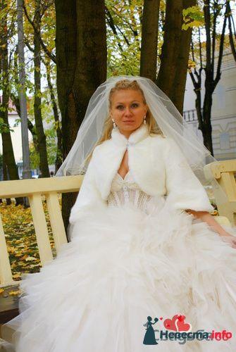 Фото 101823 в коллекции Мои фотографии - Ирина Нестерова