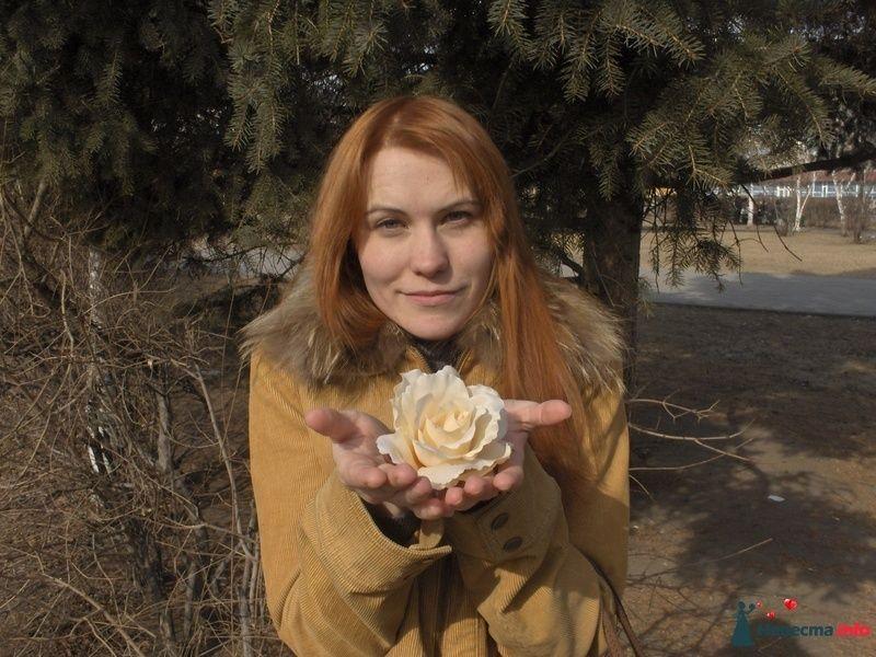 Фото 101937 в коллекции Мои фотографии - Маруська-С