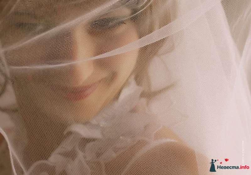 Фото 102678 в коллекции Свадебные фотографии - Алексей 89059256709