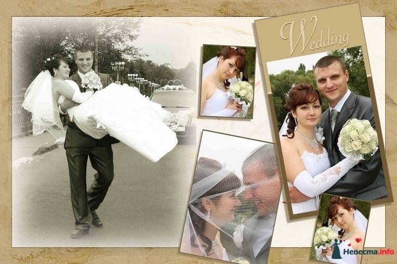 Фото 103256 в коллекции свадебный фотограф Ирина Калашникова 8-903-642-5940 - свадебный фотограф Ирина Калашникова