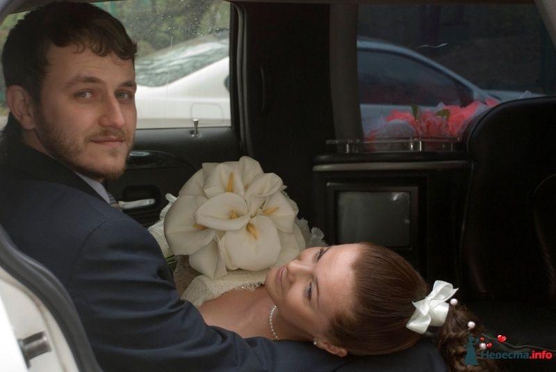 Фото 107533 в коллекции Свадебное фото - BitoCam - фото и видео