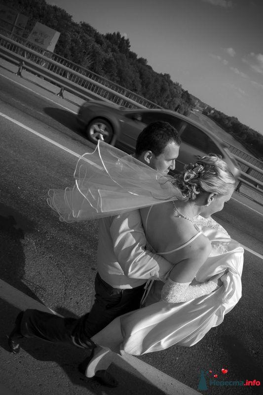Фото 127280 в коллекции wedding
