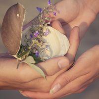 Деревянная шкатулка с полевым цветком