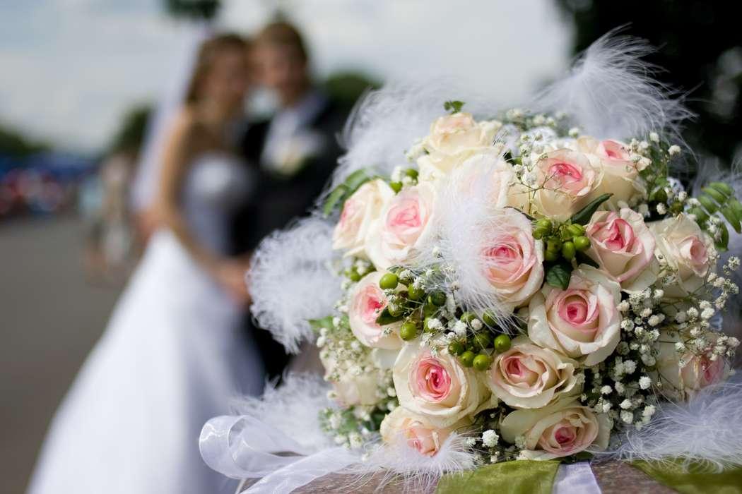 Букеты, букет из белых роз и гипсофилы