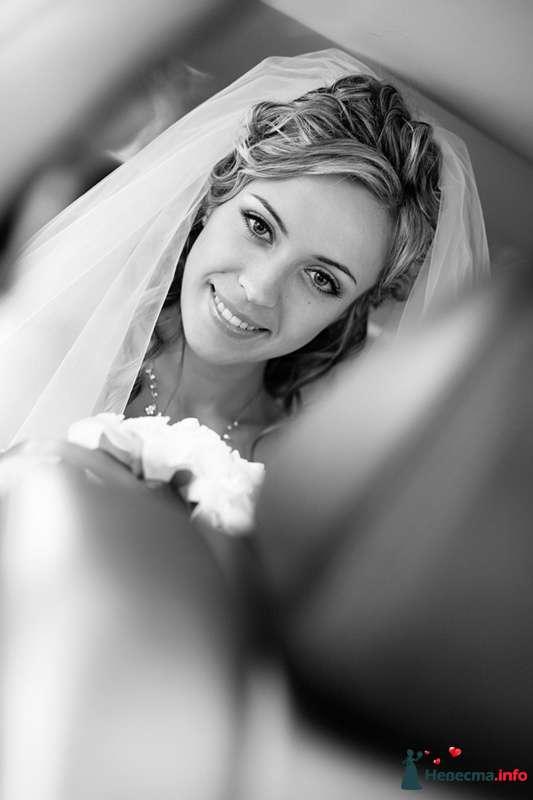 """Фото 106944 в коллекции Наши свадьбы - """"Студия креативных фотографов"""""""