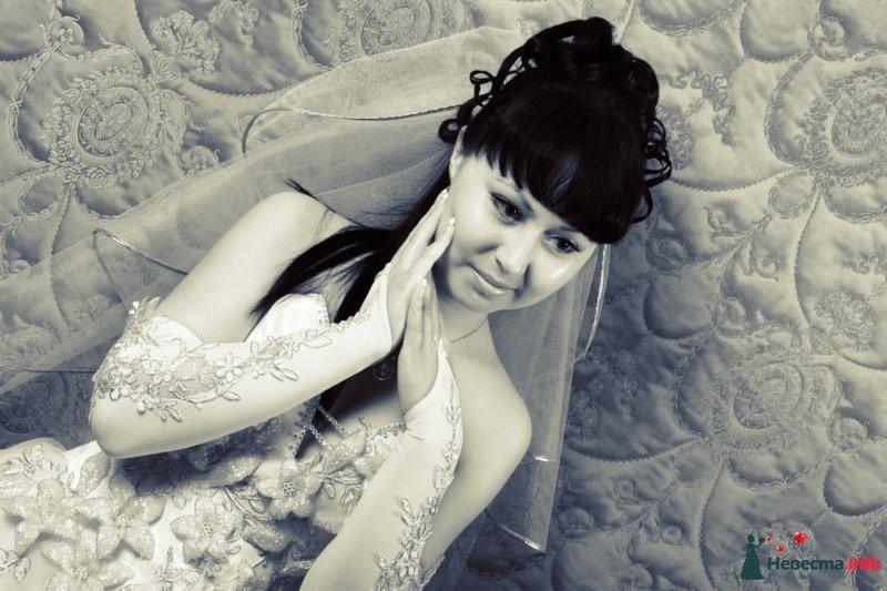 Фото 106855 в коллекции Свадебная фотография