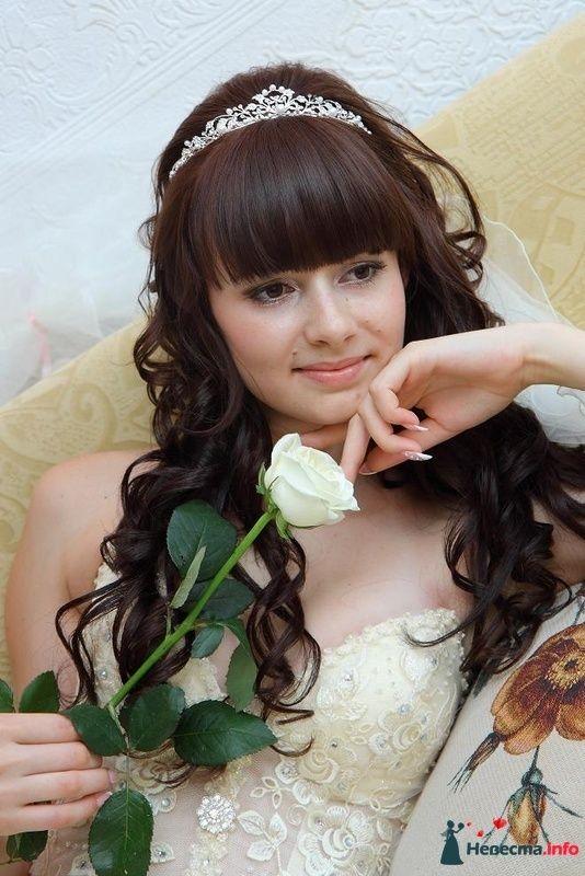 Фото 118869 в коллекции Мои фотографии - Marisa