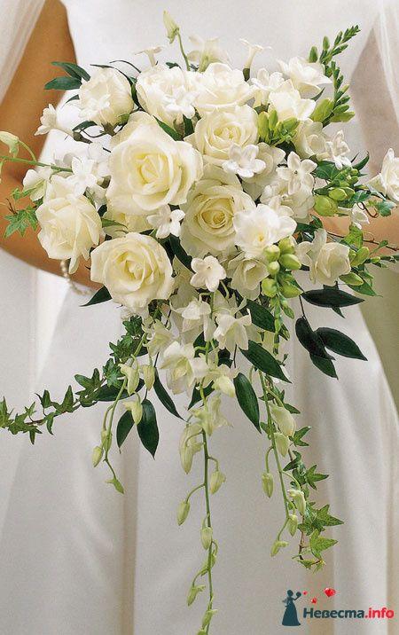 Белый  - розы и плющ - фото 124682 Zmeika