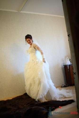 Фото 168 в коллекции Моя свадьба - inca-sova