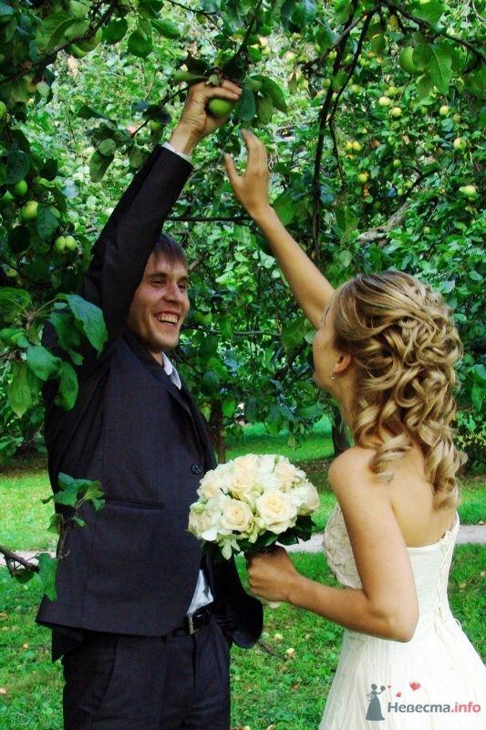 Фото 48385 в коллекции Мои фотографии - Свадебный стилист Дарья Карюхина