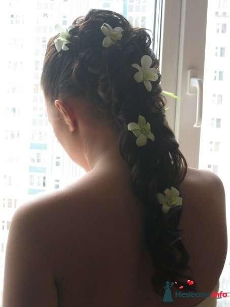 Фото 110715 в коллекции Мои фотографии - Свадебный стилист Дарья Карюхина