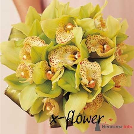 Фото 19974 в коллекции букеты с орхидеями
