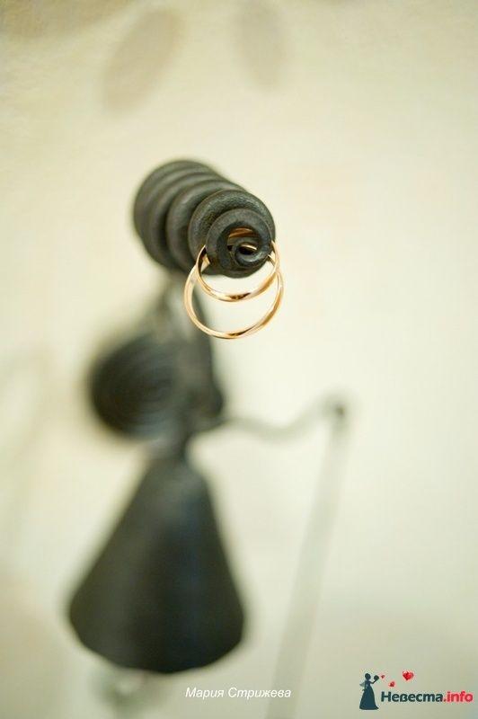 Фото 126000 в коллекции Мои фотографии - Пухлик