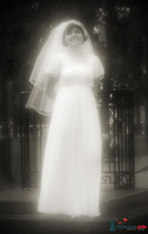 Свадебный фотограф Николай Сульженко - фото 109418 Свадебный фотограф Николай Сульженко