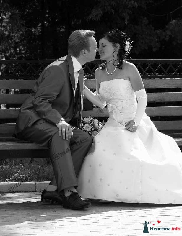 Фото 111026 в коллекции Свадебный Альбом - Мария Чайка