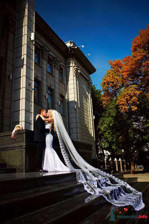 """Фото 111259 в коллекции Мои фотографии - Свадебное агентство """"Свадьба твоей мечты"""""""