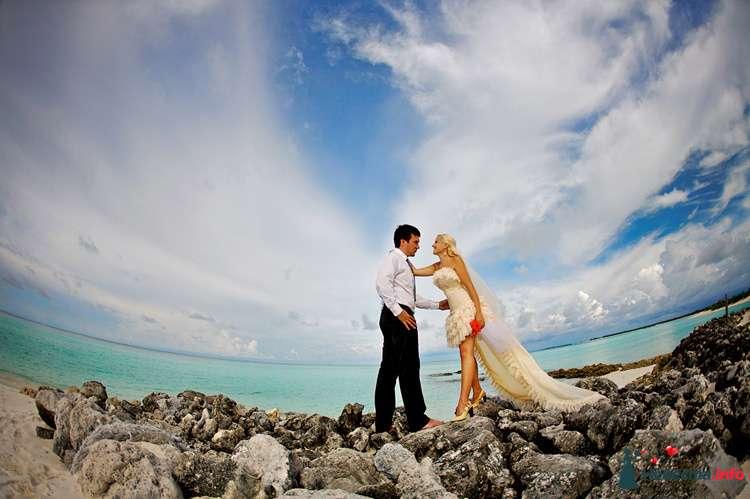 """Фото 111274 в коллекции Мои фотографии - Свадебное агентство """"Свадьба твоей мечты"""""""