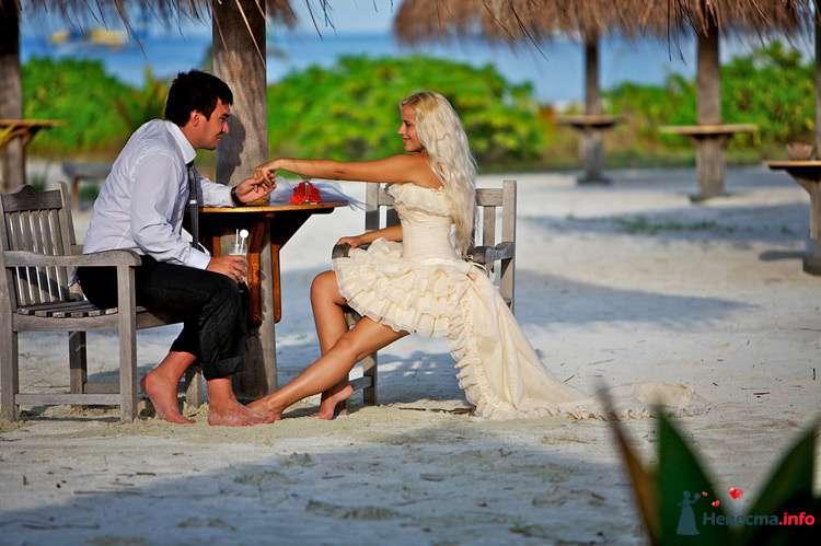 """Жених в белой рубашке и черных брюках сидит взяв за руку невесту напротив за столиком в коротком бежевом платье и фате - фото 111291 Свадебное агентство """"Свадьба твоей мечты"""""""