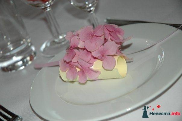 Сюрприз-благодарность для гостей. (15.08.2009, Калининград) - фото 112401 Алена Рогачикова