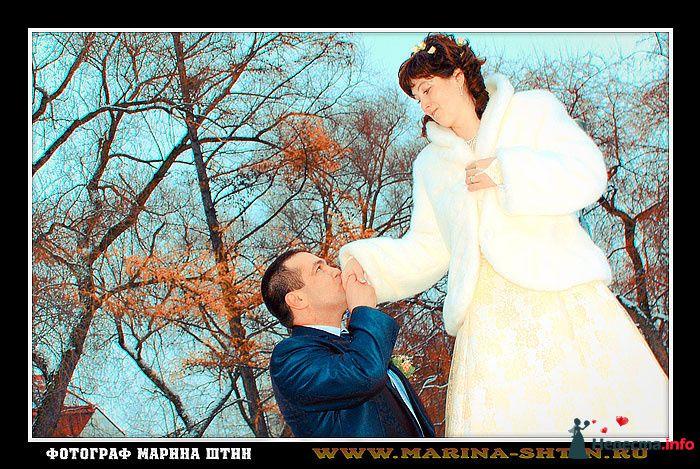 Фото 112526 в коллекции Свадебное фото - Марина Штин-фотограф, www.marina-shtin.ru