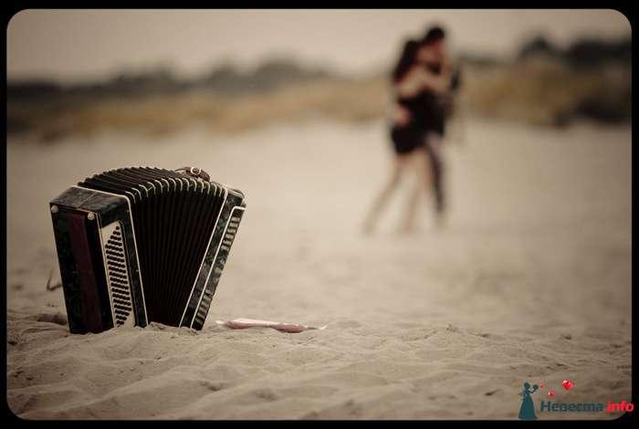 Олеся и Глеб 1:  Love Story - фото 112880 18051983