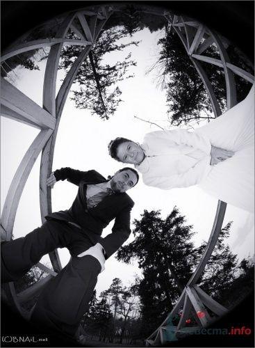 Фото 9422 в коллекции Оля и Алексей - Свадебный фотограф Ерофей Петухов