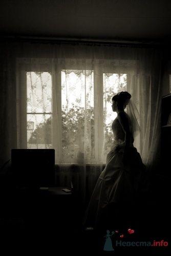 Фото 9450 в коллекции Катя и Илья - Свадебный фотограф Ерофей Петухов