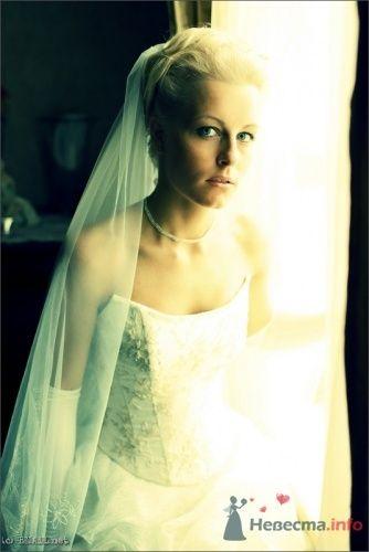 Фото 9459 в коллекции Саша и Катя - Свадебный фотограф Ерофей Петухов