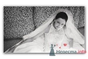 Фото 10318 в коллекции Райские мгновения свадьбы