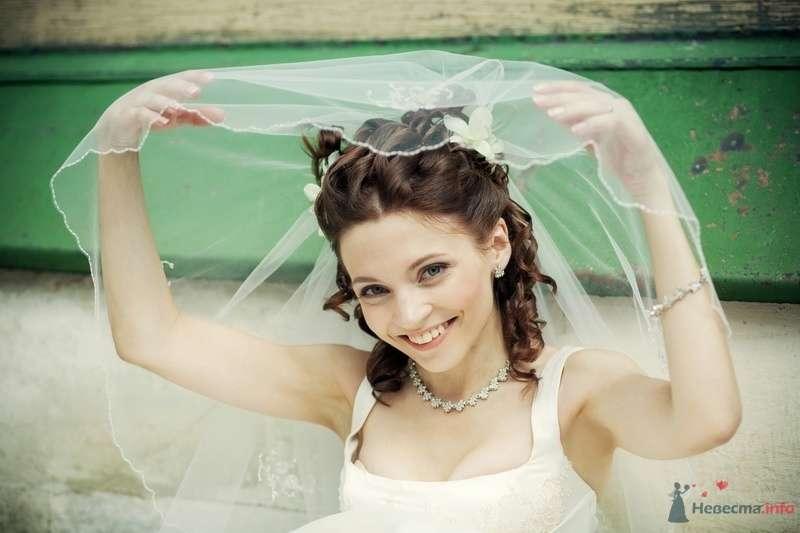 Заячья свадьба или Любовь-морковь и все такое_1 - фото 58276 dimina lapa