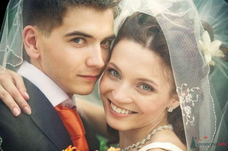 Заячья свадьба или Любовь-морковь и все такое_3 - фото 58281 dimina lapa
