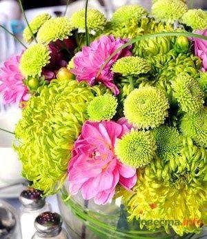 салатовый с розовым - фото 49348 Missy