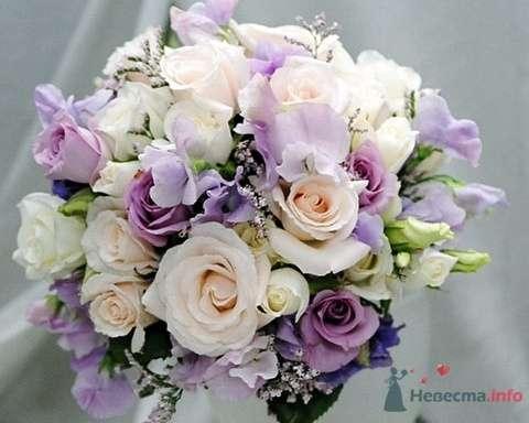 голубые розы - фото 49923 Missy