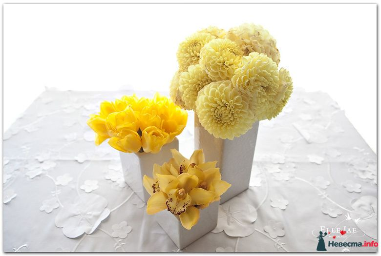 Кремовые астры,орхидеи цимбидиум и желтые тюльпаны в белых