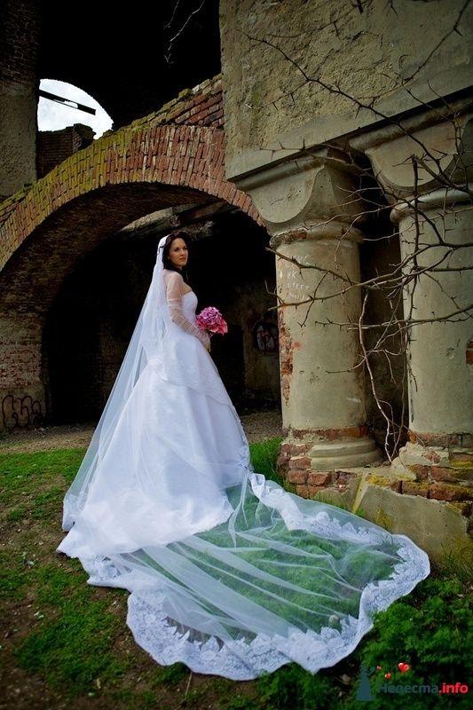 Фото 114288 в коллекции Высокая Мода Свадеб - Moon Light Agency - свадебное агентство