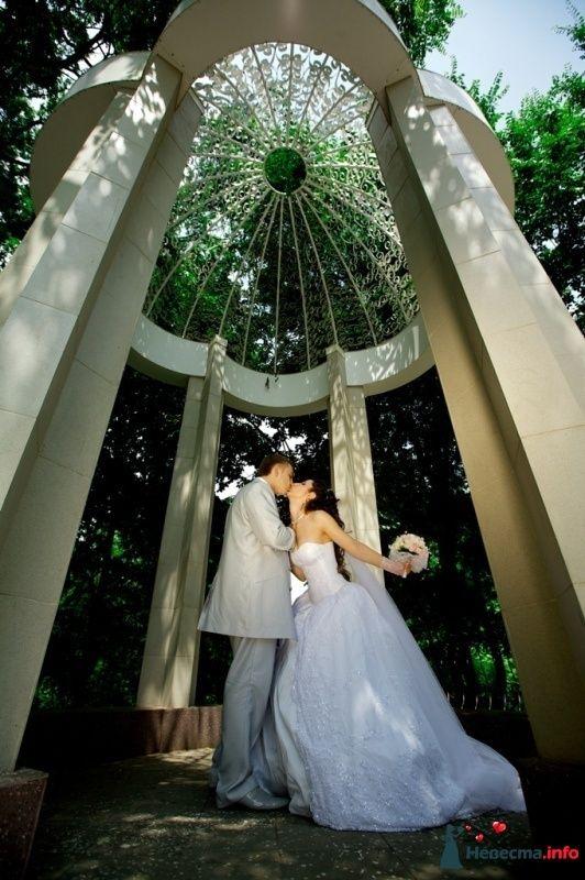 Фото 114299 в коллекции Высокая Мода Свадеб - Moon Light Agency - свадебное агентство