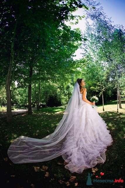 Фото 150521 в коллекции EdelWeissDress - EdelWeiss - wedding planning