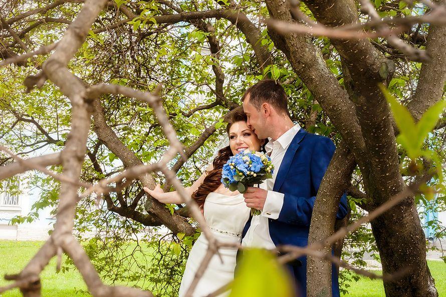 Фото 2445199 в коллекции Wedding - Свадебный фотограф Толстикова Кристина