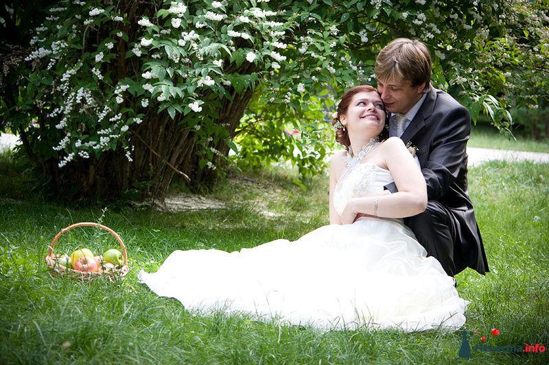 Фото 116394 в коллекции Свадебный альбом - Фотограф Комаров Дмитрий