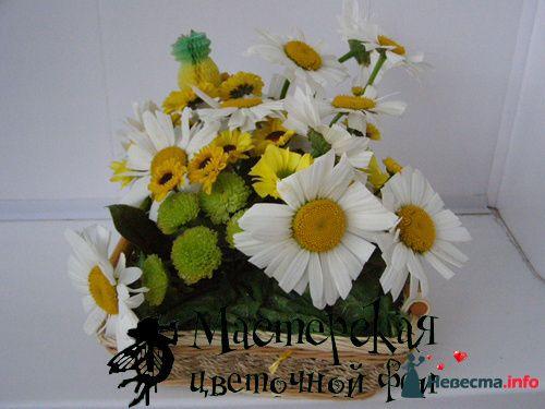"""композиция из ромашек """"Квадраты"""" - фото 121682 Мастерская цветочной феи - цветы"""